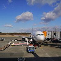 JALの「どこかにマイル」で熊本へ