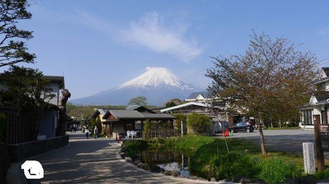 一泊二日で計画したゴールデンウィークの山梨県富士五湖周辺旅行の二日目。<br />初日は富士五湖周辺の景勝地をめぐる日程。二日目は三つ峠登山を中心とした日程とした。<br /><br />富士山周辺の登山は富士山の眺望がきくかがポイントである。<br /><br />2日目<br />ホテル~忍野八海~河口湖駅<br />河口湖駅~三つ峠登山口~三つ峠山頂~カチカチ山ロープウェイ~<br />河口湖駅~富士浅間神社~外川家~富士山駅<br />富士山16:29頃~大月17:29/17:49~新宿18:55 旅行終了