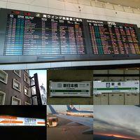 またまた東京で会議(T_T) 2日目・3日目