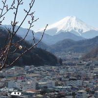 今年も山ゴハン始めました【富嶽12景】~岩殿山~