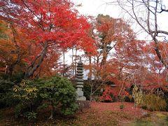 京都紅葉めぐり (3)