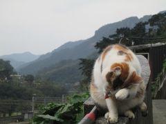またまた台湾上陸!美味しかった旅 後半