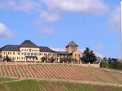 ドイツのワイン醸造所を訪れて