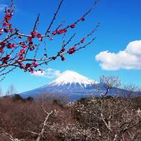 山梨/日本っていいなぁ。富士を眺めて温泉につかる冬@湖楽おんやど富士吟景(2017年2月)