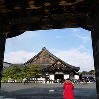 京都に行きたい!①二条城・六角堂・マリベル・本能寺・一保堂・八坂神社・アラビカで珈琲。