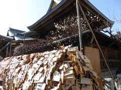 湯島天満宮「梅まつり」 Vol.1 梅の盆栽や絵馬を眺めて♪