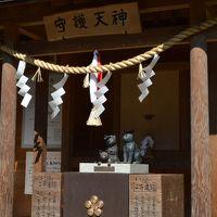 大阪高槻☆猫神社 2月22日は猫の日