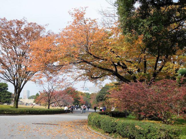 10時からの皇居一般参観が終わった後は大手門から東御苑に向かいました。<br /> 東京駅前には銀杏が黄葉していてきれいでした。<br /><br /> 東御苑では皇居警察の音楽会もありました。<br />富士見多聞の工事が終わり中の見学ができるようになっていました。