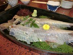 <1>雪が舞い散る九州北部へ、ランタンフェスティバル&美味しもの食べ巡りの旅(佐賀編)