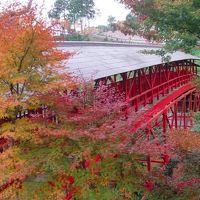 静岡県浜松市の臨済宗方広寺派大本山方広寺を訪ねて