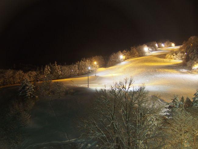 雫石といえば温泉とスキーですね。<br />わたしたちはスキーはしないので、雪見風呂を満喫しました。<br />夕食はライトアップされたゲレンデを見ながらビュッフェ形式でいただきます。<br />天ぷら、海鮮丼、地鶏焼き、ロストビーフにカニ食べ放題!<br />好きなものを好きなだけ(^o~