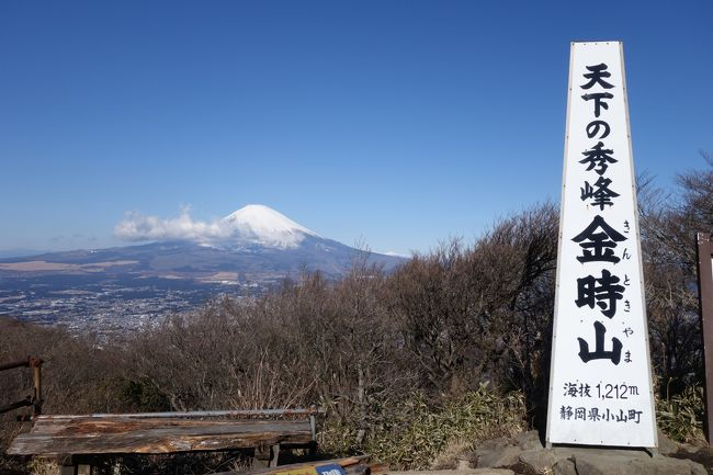 昨日スノボーから帰って来てすぐ今度は神奈川の金時山を縦走してきました。<br />久々の雪山以外でのみっちりの山行<br />神社から金時山へは何気に急な登りでしたが、時間は一時間弱で山頂なので疲れるほどではなかったです。<br />山頂からは快晴の富士山を間近で見れて大満足!!改めて富士の偉大さを知りました。<br />山頂では箱根山、芦ノ湖、仙石原などもくっきり見えました。<br />そして金時山から縦走です、手始めは明神山を目指しましたが何気に距離がありました。<br />登山道も泥道で大変でした、また竹藪で道を塞ぎつつもあり中々思う様に進めない所もありました。<br />道程もアップダウンありますがなだらかな道なので楽に進めて行けました。<br />明神山から明星山も基本下りの泥の道でしたが、こちらは体力より足元が滑らない様に慎重に進みました。<br />明神山から宮城野橋バス停までは急な下りですが、こちらは距離が短かったです。
