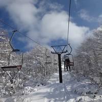2度目の蔵王温泉スキー場  H29.1.9.~12