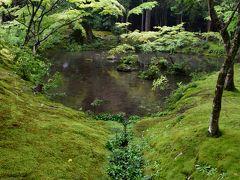 2泊3日、大阪泊京都小旅行 その5 「雨の嵐山。西芳寺(苔寺)1周目」