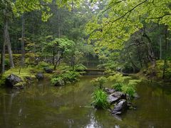 2泊3日、大阪泊京都小旅行 その6 「雨の嵐山。西芳寺(苔寺)2周目」