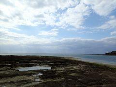 獄寒の沖縄でダイビング!