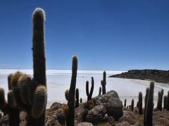 ボリビア 雨季のウユニ塩湖 3.塩湖に浮かぶイヌワシ島へのショートトリップ