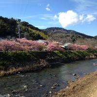 娘とショートトリップ。 東京と伊豆を訪ねて。
