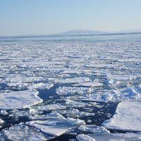 冬の魅力いっぱい⛄オホーツク沿岸❄網走で流氷を楽しむ旅