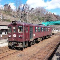 鉄と食の旅 〜わたらせ渓谷鐡道・宇都宮餃子〜