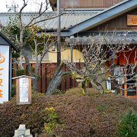 2017年3月初旬、厚木~ゼロ磁場七沢荘で癒されました~。亀石はド迫力。
