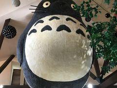 トトロと恐竜を見に3月の伊豆へ【子連れ】