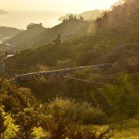 早春の伊予灘・西伊予地方を巡る旅 ~黄色い春色の風景を探しに、大洲城~西予・法華津峠に訪れてみた~