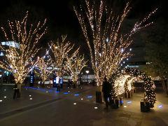 またまたまた仙台へ(2016年12月)