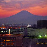 日本夜景遺産の川崎マリエンと東扇島散策 〜Part2 夜景編〜