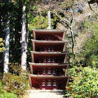 関西1dayで行く!室生寺・保津川と関空乗り鉄の旅1(室生寺編)