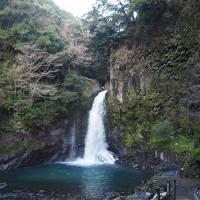 楽々バスツアーで行く♪全館貸切!大滝温泉「天城荘」と河津桜♪