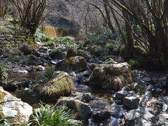 ⑬高尾山健康登山(12) (リフト)-高尾山山頂ーいろはの森ー高尾梅郷ー高尾山温泉