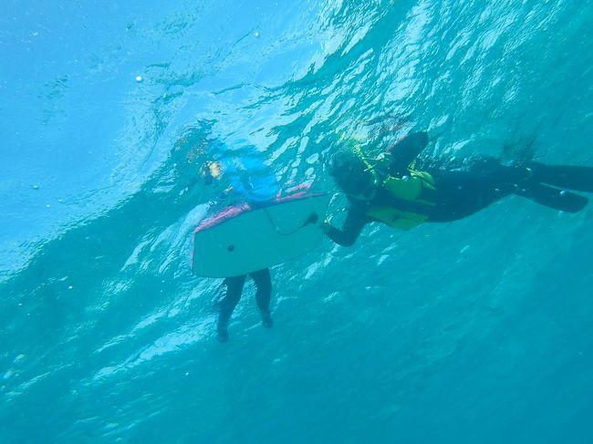 たまたまANAのHPを見ていたら、なんと新潟―沖縄の直行便が旅割でかなりお得に!<br /><br />え~~!どうしよう・・・・<br />沖縄行きたい・・・<br />マナティを美ら海水族館に連れて行ってあげたい・・・<br /><br /><br />でも・・・<br /><br />と悩んだ末、この価格で往復できるのはもうないかも!とポチッとしてしまいましたw<br /><br />なんと片道9,800円!<br /><br />残り3席だったのです。<br /><br />ラッキー!<br /><br />てことでマナティ初沖縄です!<br /><br /><br />2017年<br />   3月11日 新潟―那覇 <br />★3月12日 那覇―恩納―本部<br />   3月13日 本部<br />   3月14日 本部―那覇―新潟<br /><br />宿泊ホテル 1日目 サンプラザホテル沖縄<br />     2~3日目 マリンピアザオキナワ<br /><br />2日目は那覇からレンタカーで恩納へ!<br />今日はカヤックとシュノーケル!<br /><br />マナティ海大丈夫かなぁ・・・<br />