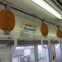 [青春18きっぷ 2016夏-最終回] 乗車券の他にソースが必要です(笑)【関東鉄道竜ヶ崎線・ひたちなか海浜鉄道】