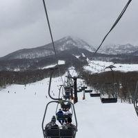 仔猫といっしょ計画(新潟2015 妙高高原スキー編)