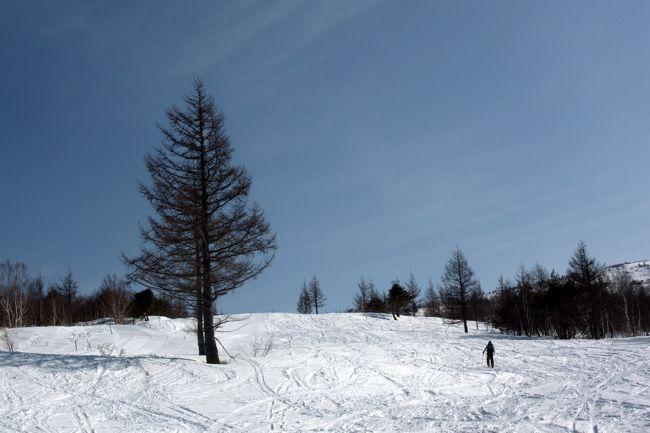 奥タボススノーパークゲレンデトップから山スキーで根子岳山頂往復。