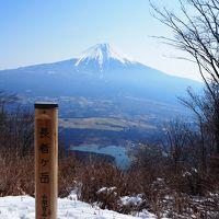 富士山の大沢崩れを見に 長者ヶ岳〜天子ヶ岳ハイキング 田貫湖から