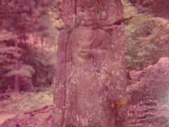 1978年(昭和53年)5月 奈良の旅(興福寺 浄瑠璃寺 岩船寺 法起寺 法輪寺 柳生街道散策 柳生の里)