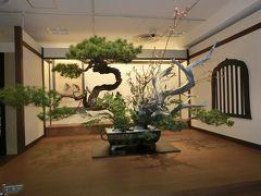 (大阪)生まれて初めて「いけばな展(花の力:池坊展)」に行き、「華道の技と心」にふれてきました。(2017)