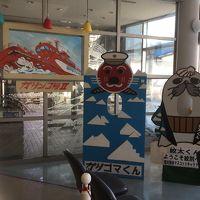3月の初流氷★見えなかったけど冬の北海道も満足★食べまくり買いまくり (2) 2日目 紋別編