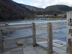 京都市西側にある名勝地、嵐山を散策