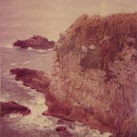 1979年(昭和54年)4月四国一周(愛媛 高知 徳島 香川)の旅9日間�高知(宿毛 柏島 大同断崖 野猿公園 竜串 足摺岬)