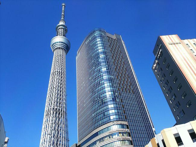 年度末になり有休を消化しなくてはならないのでLCCで格安航空券を買い、東京へ。<br />宿泊先は長男が住んでいるので無料(清掃奉仕)<br />他の子供と行くと必ずTDRに行ってしまうのでじっくり東京見物できないのでたまにはのんびりいいかなと....<br />スカイツリー大好き