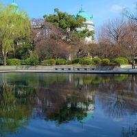 上野の杜散歩 櫻も咲きはじめる 3000冊記念