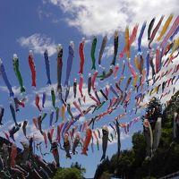 神流町の鯉のぼり祭りと、上野村の鍾乳洞と
