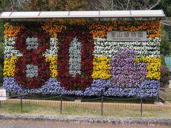 2017春、東山植物園の梅と河津桜(8/8):3月10日(8):竹林園、真竹、ハンカチノキ、シナマンサク、也有園、80周年記念パネル