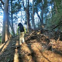 箱根へ! 箱根古道を歩きます。その1 鎌倉古道(湯坂路)へ。小涌谷ー千条の滝ー浅間山ー鷹巣山 宿泊は箱根小涌園ホテル