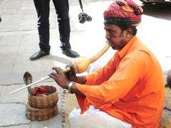 タージマハールを一目見たいと遥々インドへ行きました(1)成田~デリー シテイパレス、風の宮殿