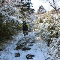 箱根へ! 箱根古道を歩きます。その2 鎌倉古道(湯坂路)から旧東海道へ 鷹巣山ー湯坂路入口ー曽我兄弟の墓 途中は雪道でビックリ!
