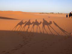 モロッコ添乗員付ツアー③ サハラ砂漠でジャマルにのる